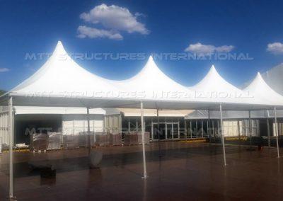 MTT Fiesta Structure (1)